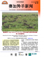 Chinese_Issue_14