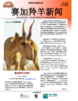 Chinese_Issue_15