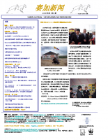 Chinese_Issue_3