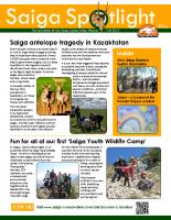 Saiga Spotlight 2015